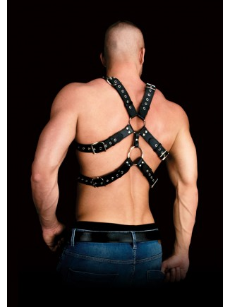 Leather double harness
